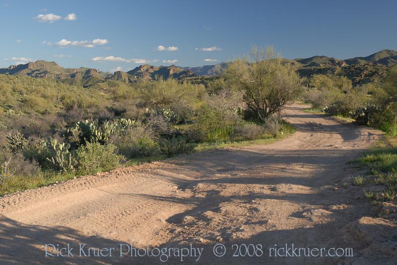 D200_2008-03-09DSC_5355-DesertRoadWide