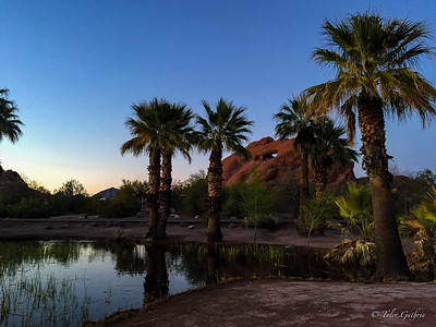 Isle of the Palms