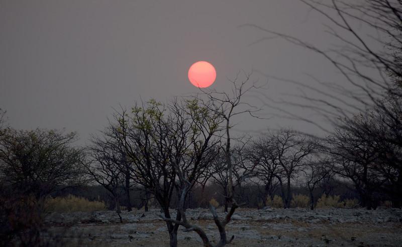 Etosha, Andersson Camp Sunrise