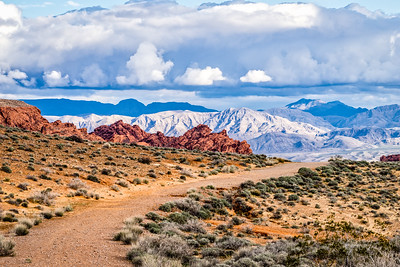 Nevada2017-0298
