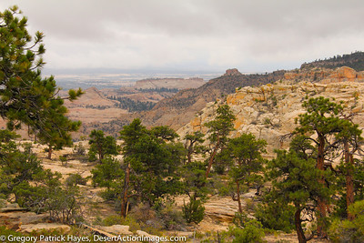 Secret Spots within the Grand-Staircase Escalante National Momnument, access through Excursions of Escalante and Images by GPH Photography.