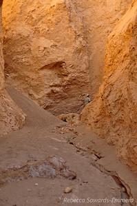 David in Desolation Canyon