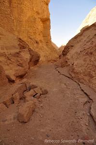 Desolation Canyon