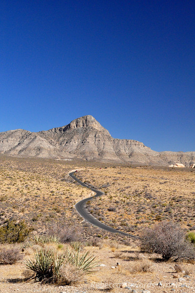 Turtlehead Peak and the road through the park