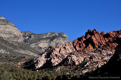 We headed up the gentle grade and found some nice red rock peeking out.