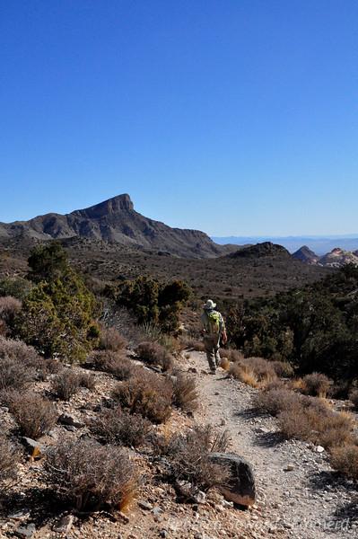 David and Turtlehead Peak