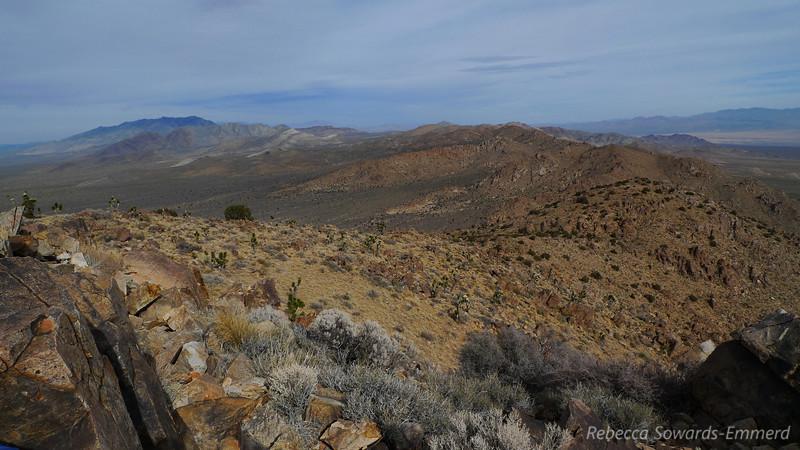 On the Kessler Peak ridge
