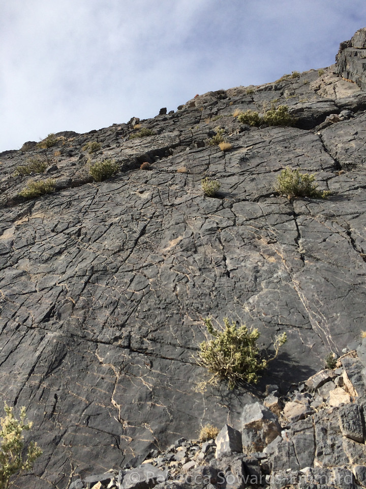 Perfect velcro rock. Steep but you stick to it.