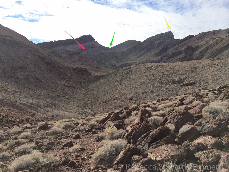We'll scramble up the chute on the left (pink arrow), then traverse to the saddle (green arrow), then hopefully get a good visual for the final route to the summit (yellow arrow)