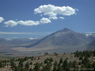 Mt Tom