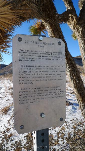 Goldfield pioneer cemetery.