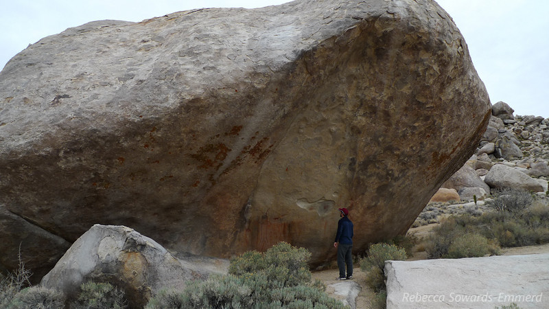 David checking out the pictographs