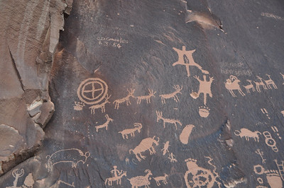 Elk, pelts, buffalo, people hunting, footprints.