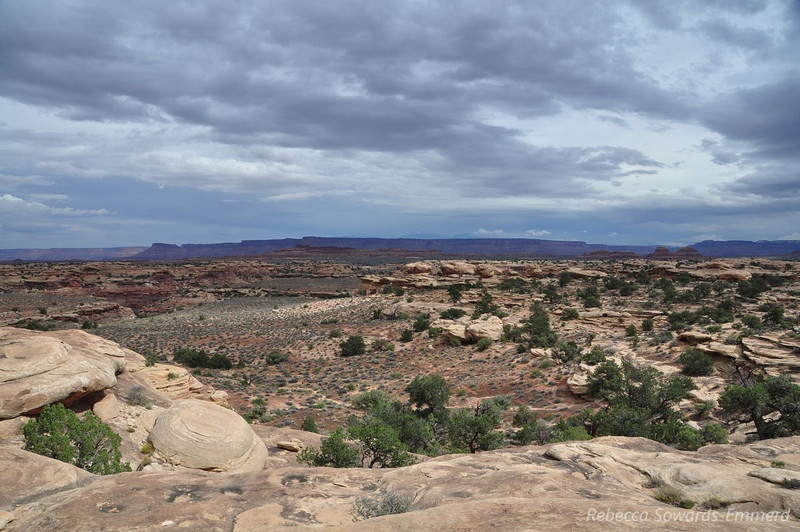 Slickrock Trail, Canyonlands National Park Needles District