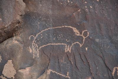 Buffalo petroglyph at Newspaper Rock