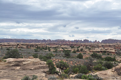 View towards the Needles from the Slickrock Trail, Canyonlands National Park Needles District