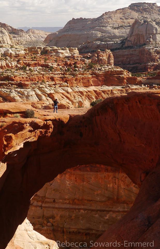 David on Cassidy Arch