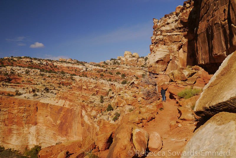 Hiking to Cassidy Arch
