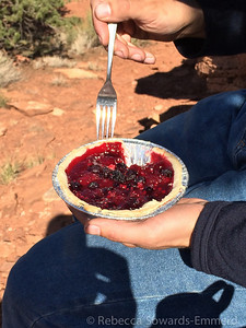 The Fuita historic district in Capitol Reef has a pie bakery. Therefore, lunch = pie. David got the berry pie...