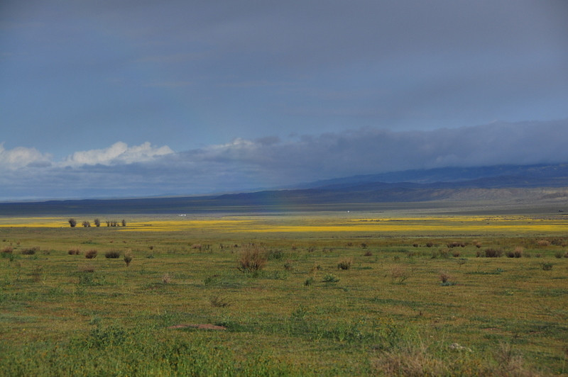 Morning view of Carrizo Plain. Faint Rainbow in the middle