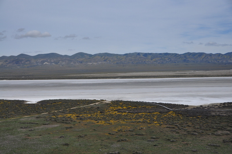 Soda Lake<br /> <br /> View of Soda Lake in Carrizo plain. Far hillsides of temblor range have some yellow, but the main color was south of Soda Lake