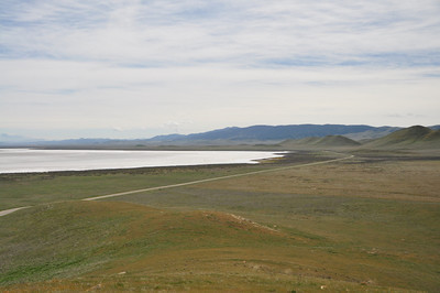 Soda Lake and hillsides of fiddleneck