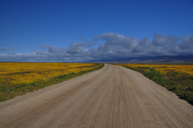 Soda Lake Road through Carrizo Plain