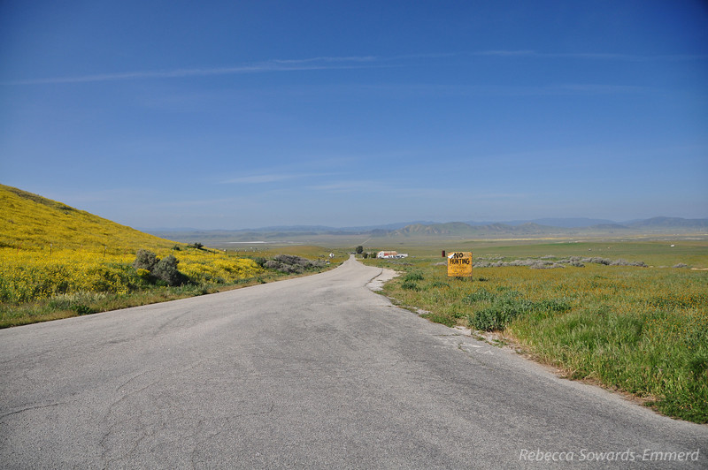 Driving into Carrizo Plain, north end.