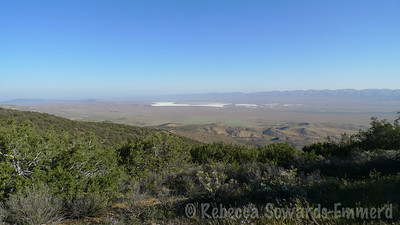 On Saturday morning a group of us hiked Caliente Mountain, the high point of San Luis Obispo County. This is the view of Soda Lake from near the trailhead.