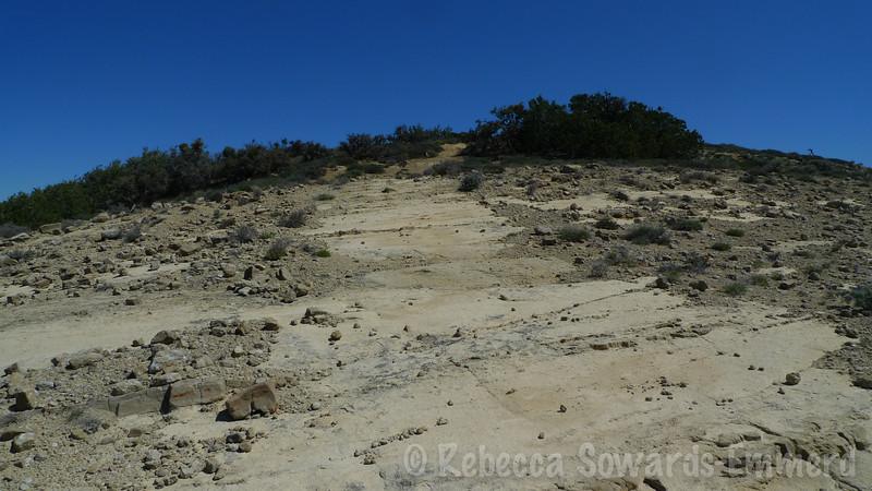 Suddenly the rock path looks like a freeway.