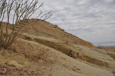 Ocotillo, trench, honeycomb rock, and david