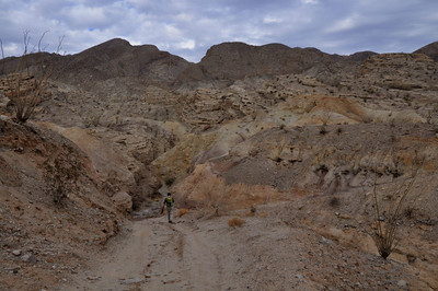 The road dips into a wash before the final climb to the mine. On the way back we detoured down the wash.