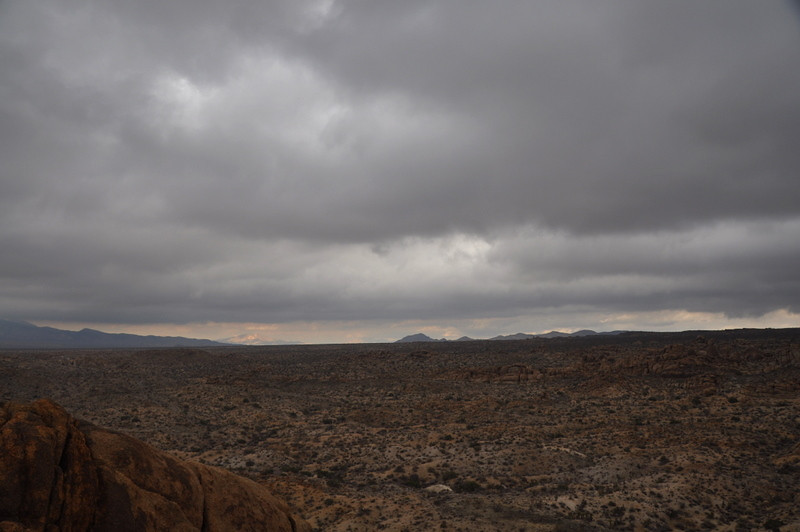 View from Mastadon Peak across Joshua Tree.
