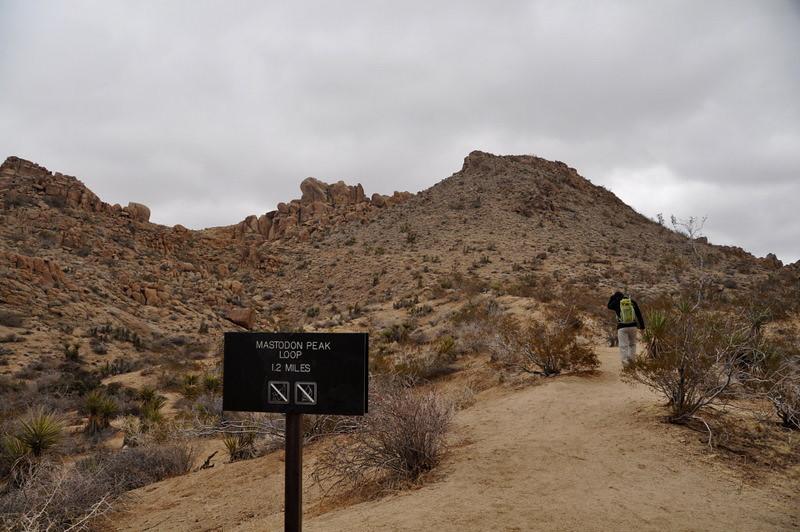 Hiking up towards Mastadon Peak