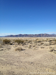 On Saturday morning we headed out to the Cowhole Mountains area of Mojave National Preserve (a few miles south of baker).