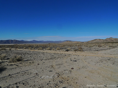 Looking back towards our campsite - Sooz's white truck is parked there, just a dot in the center of the photograph.