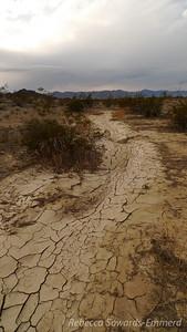 Back on flat land. Dry desert.