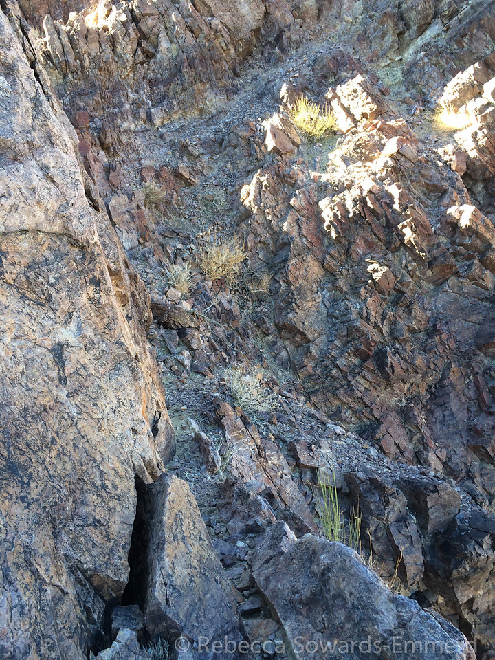 An airy ledge on the scramble to the summit. Don't look down and to the right!