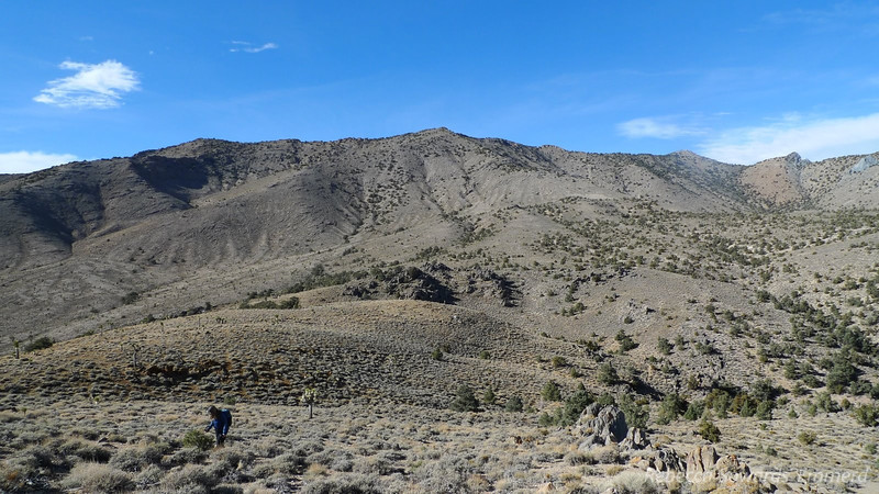 View towards the southernmost end of the Inyos (south of Cerro gordo)