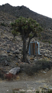 This is a classy place - it even has its own outhouse!