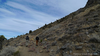 Robin, David and I head to the peak, starting off up an old mining road.