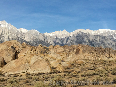 Mount Whitney from camp in the morning.