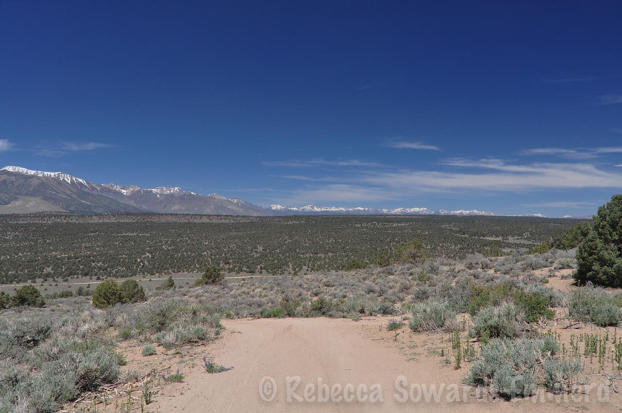 View north towards Yosemite
