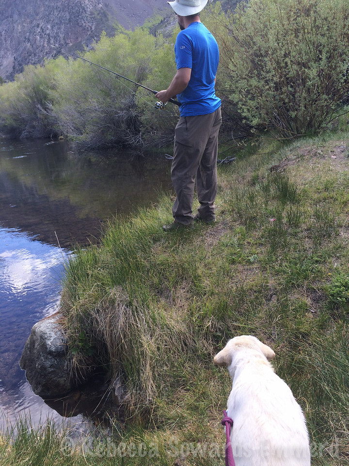 Next we went fishing and swimming. Thor was happy.