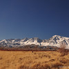 Sierra crest from a pullout on Chalk Bluff road. Mt tom at left. Basin mtn in center. Mt Humphreys left of center.