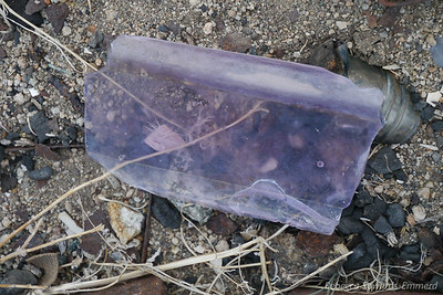 One day I'd love to find an intact old purple glass bottle.