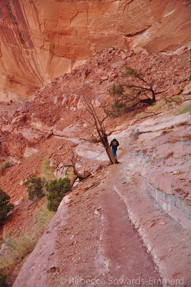 The trail passes below the kiva on some narrow ledges. Watch your step!