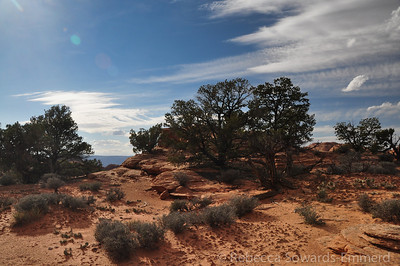 It is flat, straightforward desert navigation and scenery for the majority of the hike.