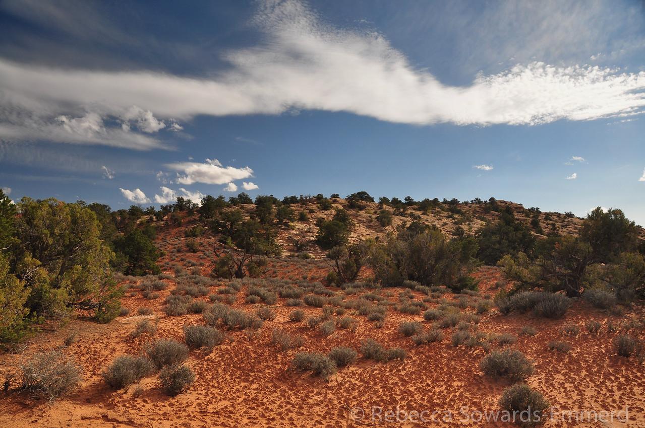 Desert soil and sky