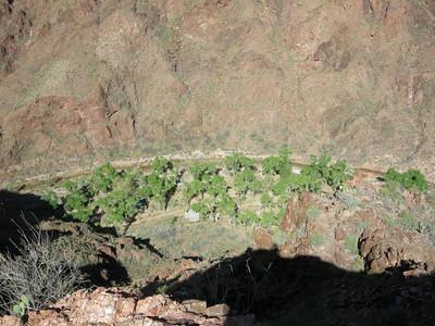 Phantom Ranch is about 400 feet below us